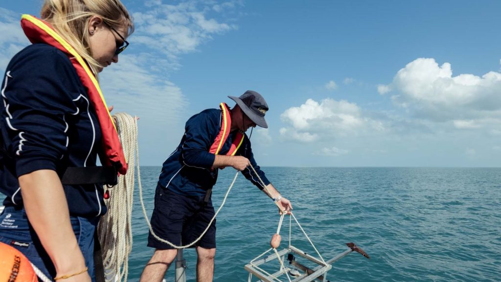 Shane Penny, Fisheries Research Scientist and his team using baited underwater cameras as part of Australia's Northern Territory Fisheries artificial intelligence project with Microsoft to fuel insights in marine science.