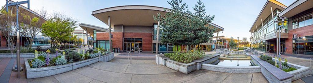 Quiet Microsoft campus during COVID-19 outbreak